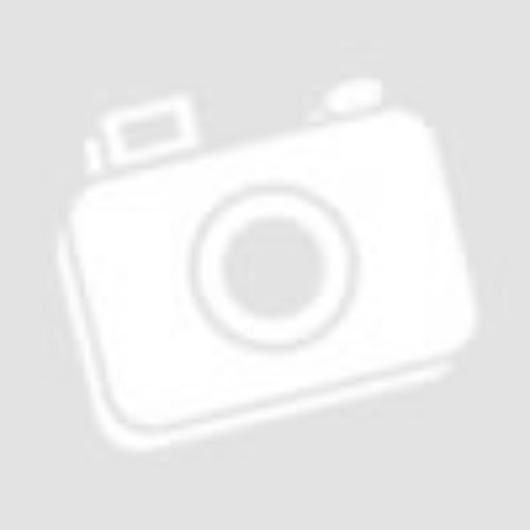 Apple iPhone SE 16GB Silver - felújított